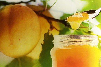 Fruchtaufstriche, Gelees