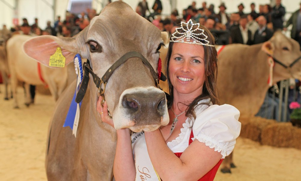 South Tyrolean Queen of brown cattle 2009 – 2012 (farmer Manuela)
